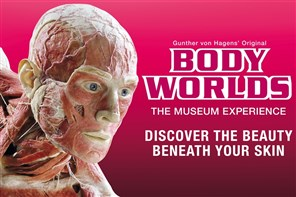 BODY WORLDS Exhibition - London