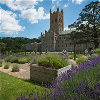 Buckfast Abbey & Salcombe