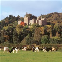 Dunster Castle - National Trust