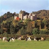 Dunster Castle - National Trust