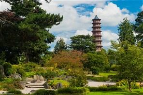 Kew Botanic Gardens GOLD