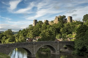 Shrewsbury & Ludlow Turkey n Tinsel
