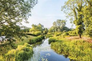 A Taste of Spring in Suffolk