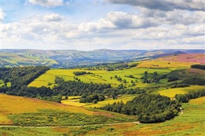 Gold Derbyshire Landscapes & the Stunning Peaks