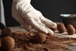 The Art of Chocolatology
