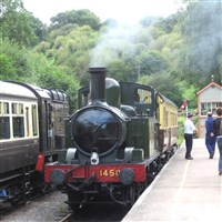 Chepstow & Dean Forest Railway GOLD