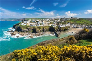 Port Isaac, Cornwall - GOLD
