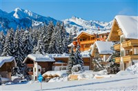 Cito-Christmas in the Austrian Tyrol