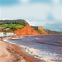 Gold Taster Exmouth, Exeter & East Devon