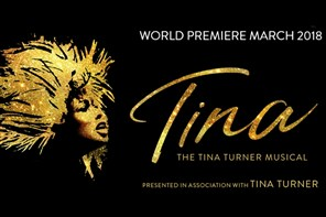 Tina The Musical - London evening show