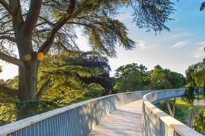 Westonbirt Arboretum GOLD